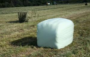Heinä säilyy tuoreena muovitetussa kanttipaalissa